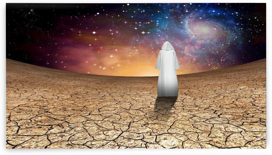 White Pilgrim by Bruce Rolff