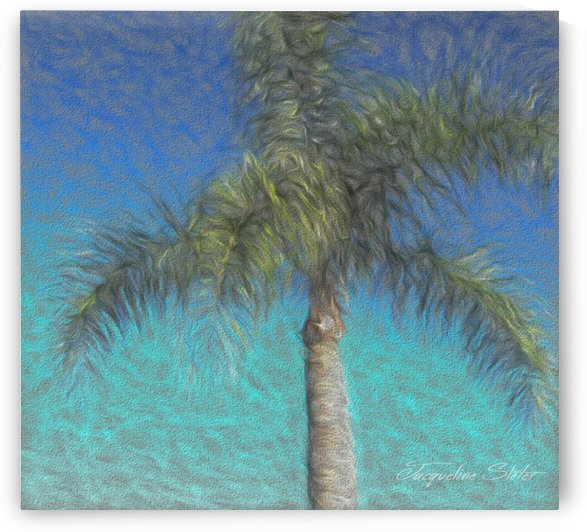 Rippled Palm by Jacqueline Sleter
