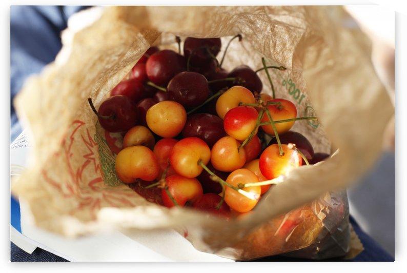 Cherries by Maria Virginia Castro