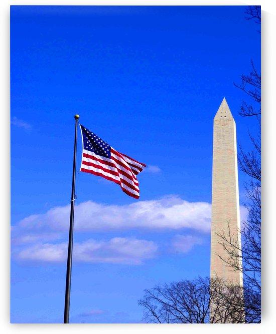 Flag & Washington Monument by Jim Jones