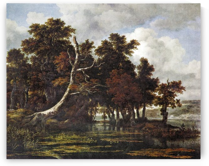 Oaks at a lake with water lilies by Jacob van Ruisdael