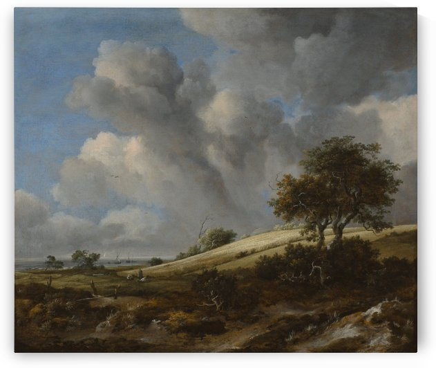 Landscape with a corn field near the sea by Jacob van Ruisdael