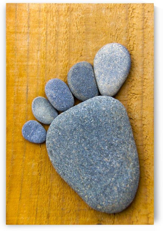 Blue Stonefoot by Kirsten Warner
