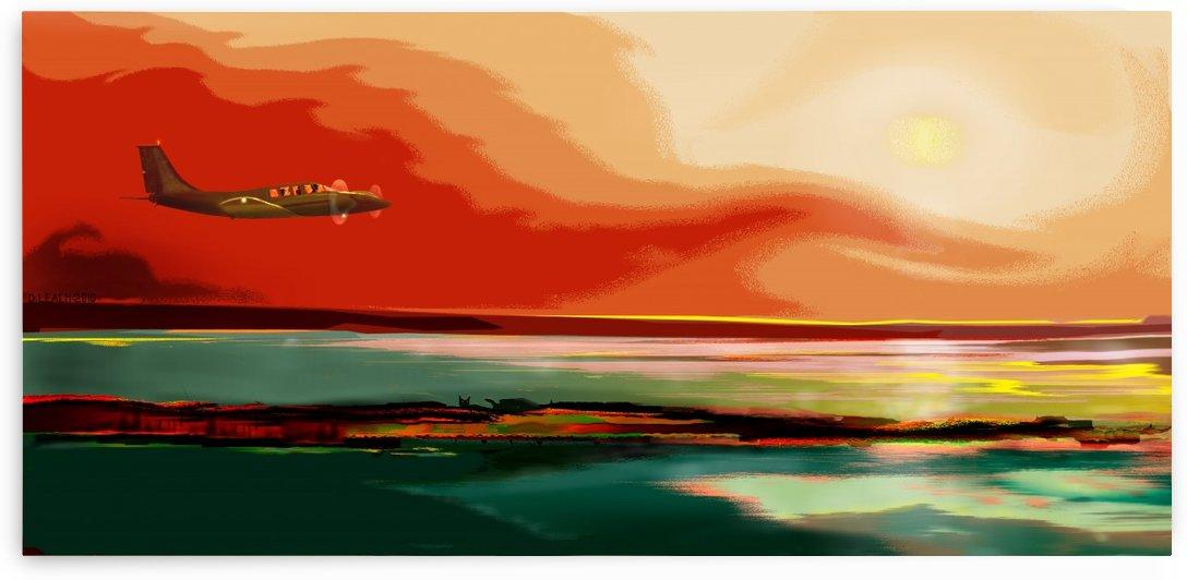 Sunset Glide 1 by Dunadan