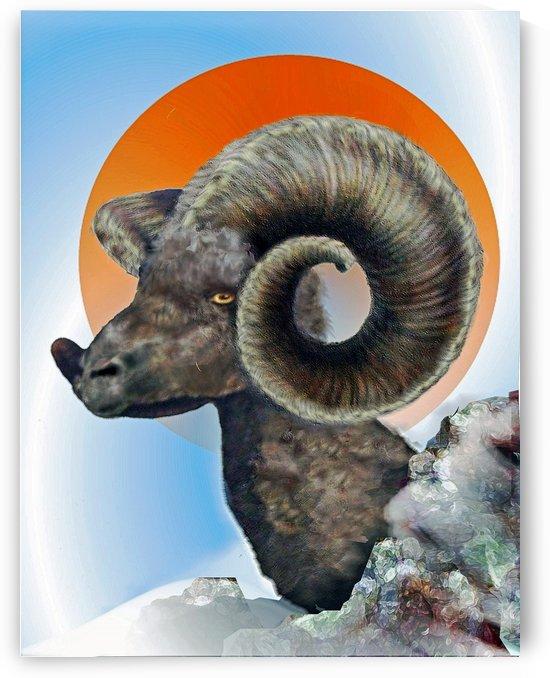 Ram by Cheryl Barker