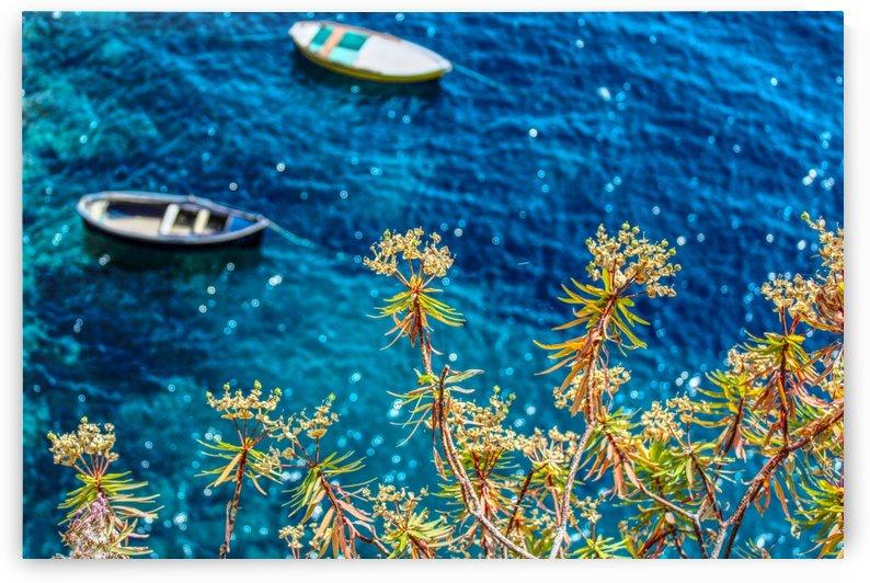 Flowers and Blue Water by Alessandro Ricardo Bentivoglio Uva