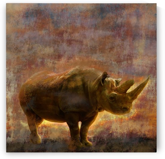 rhino by Yurovich Gallery