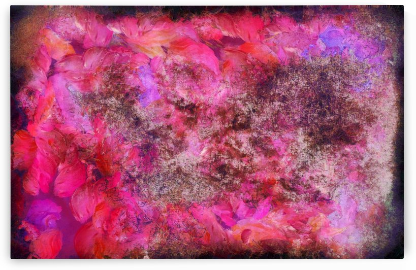 Pink Canvas by Bruce Rolff