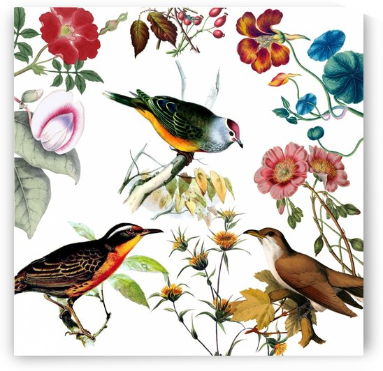 Tropical Birds and Flowers  by One Simple Gallery