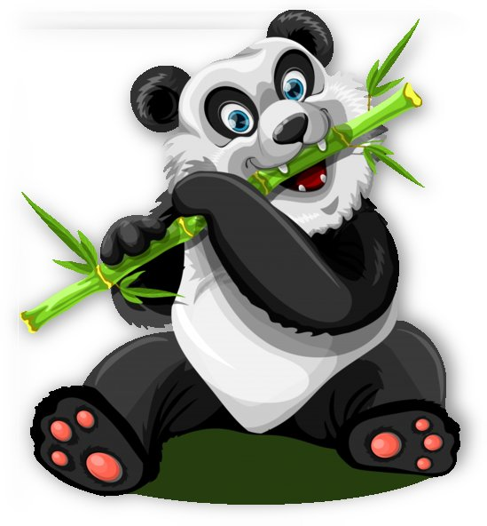 Giant Panda 1 by One Simple Gallery