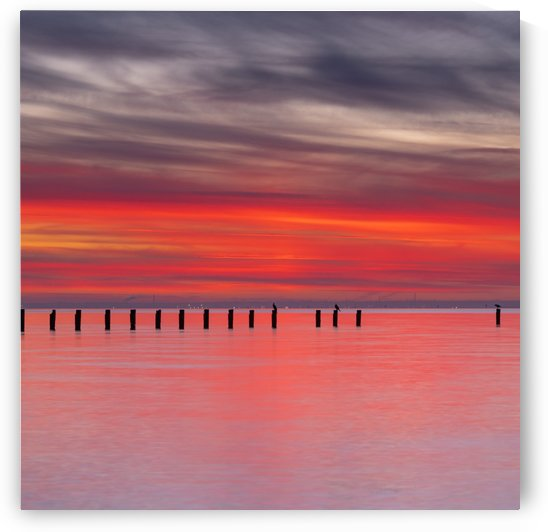 Pink Sunset over Water by Grant Cookson