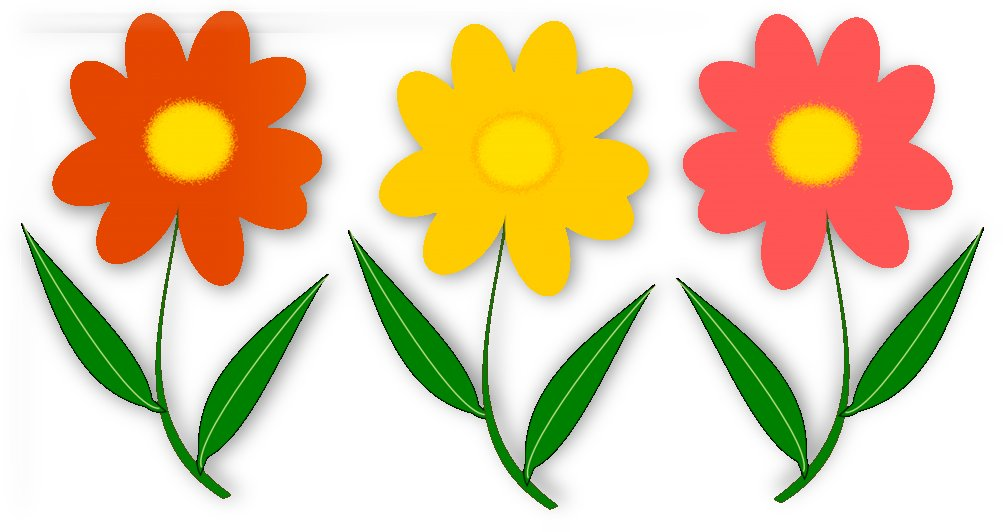Three Colorful Flowers by One Simple Gallery