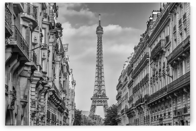 Parisian Flair | monochrome by Melanie Viola