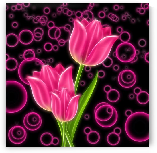 Pink Tulip 5  by One Simple Gallery