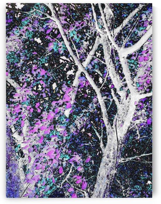 Tree Branch of Art 1 by Jeremy Lyman