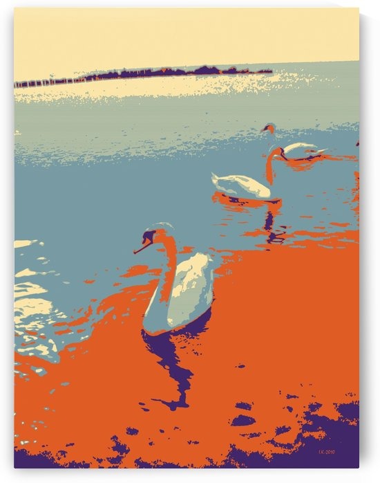 Swans by Ivan Kolisnyk