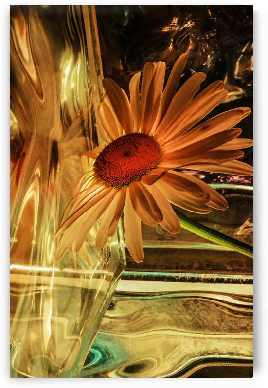 flower with glass  by Margaret Najder