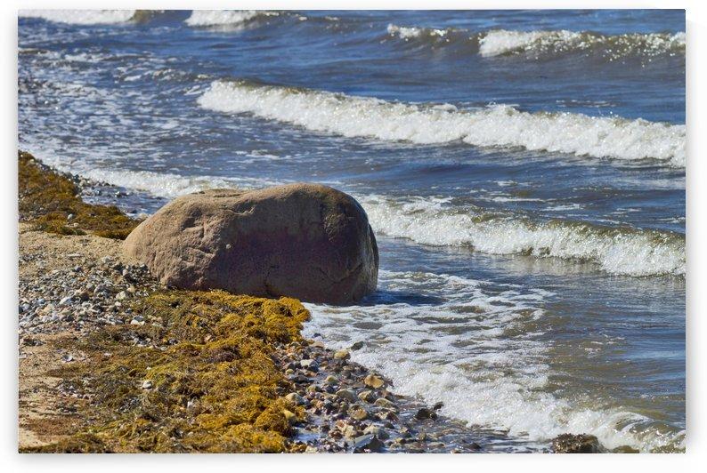Rock in water by Kirsten Warner