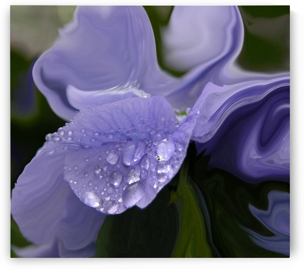 Blue Flower Covered In Rain Drops Abstract Art Print by Katherine Lindsey Photography