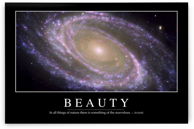 Beauty: Inspirational Quote and Motivational Poster by StocktrekImages
