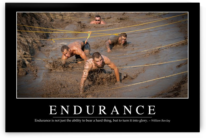 Endurance: Inspirational Quote and Motivational Poster by StocktrekImages