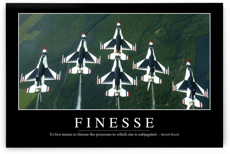 Finesse: Inspirational Quote and Motivational Poster by StocktrekImages