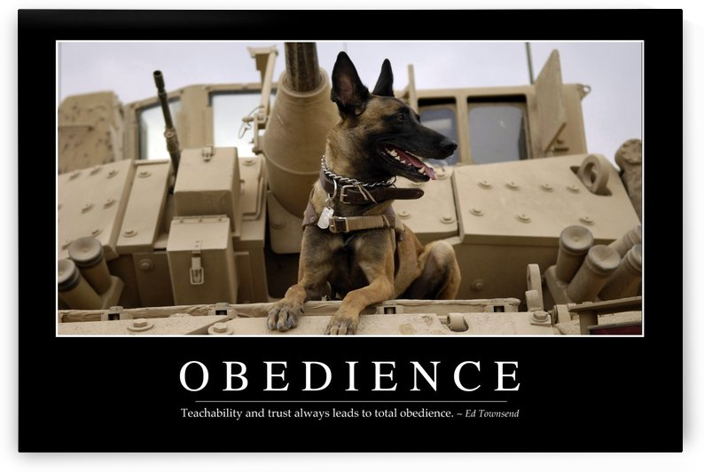 Obedience: Inspirational Quote and Motivational Poster by StocktrekImages