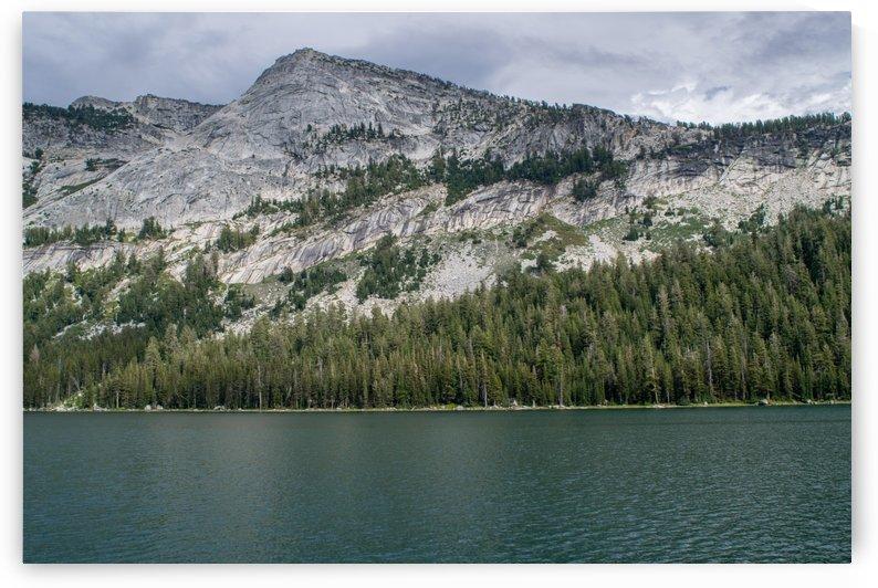 tenaya mountain by Clare Kathleen Cornelius