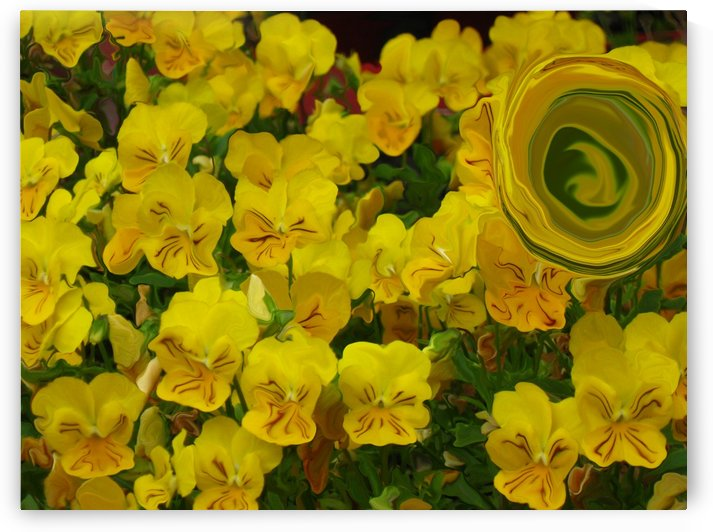 Yellow Abstract Floral Art by Katherine Lindsey Photography