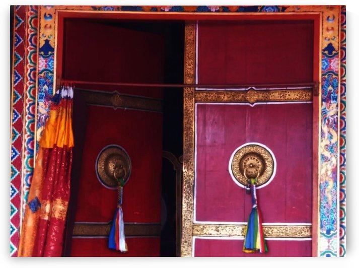 Beautiful door by Nilu Mishra