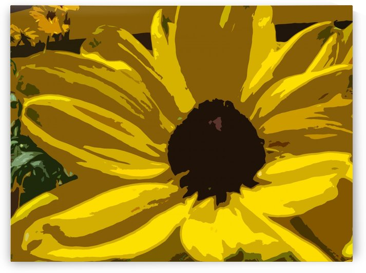 Sunflower Abstract Art Print by Katherine Lindsey Photography