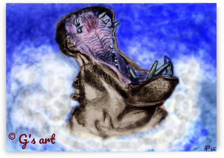 Hippo yawn by Gerald Botha
