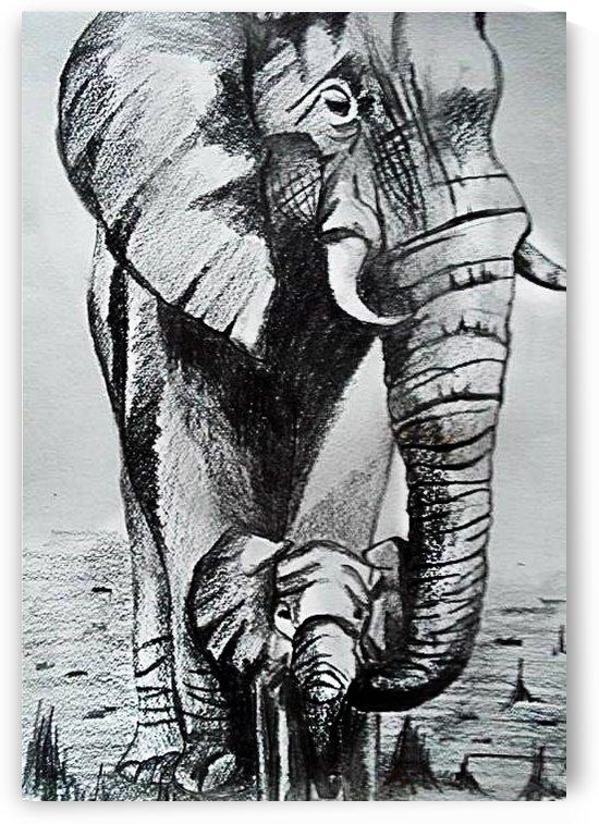 Elephant love by Gerald Botha