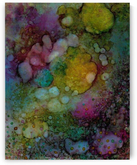 Reef by Peter Borja