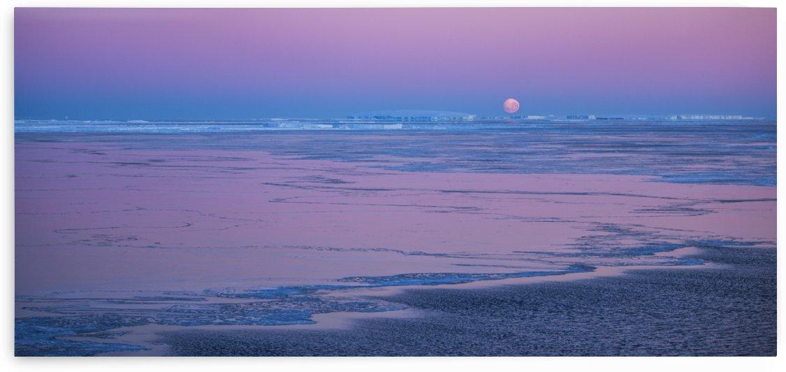 Pink Moonrise by Peter Kaple