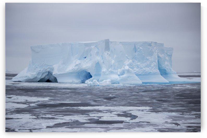 Elephant Iceberg by Peter Kaple