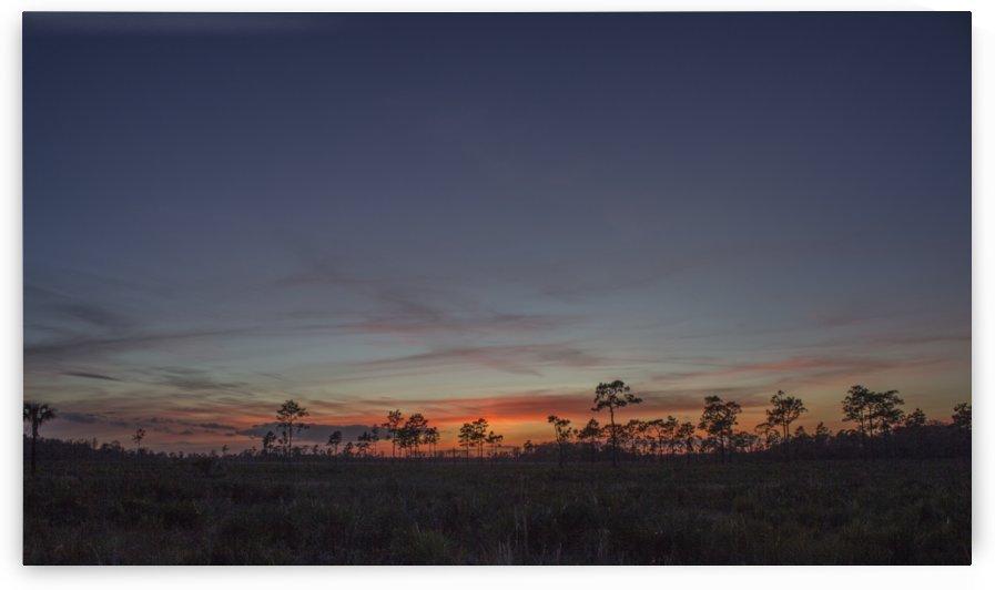 Prairie at Dusk by Peter Kaple