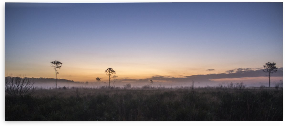 Misty Sunrise by Peter Kaple