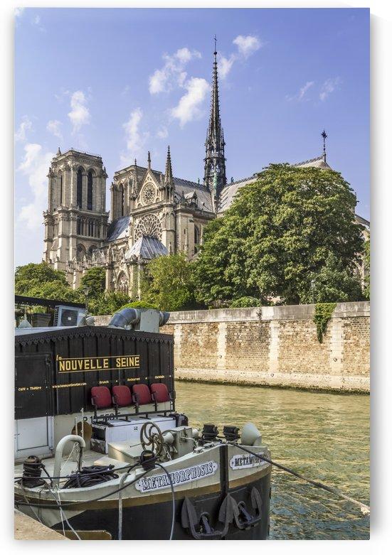 PARIS Cathedral Notre-Dame  by Melanie Viola