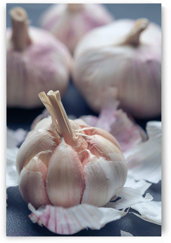 Garlic by Krit of Studio OMG