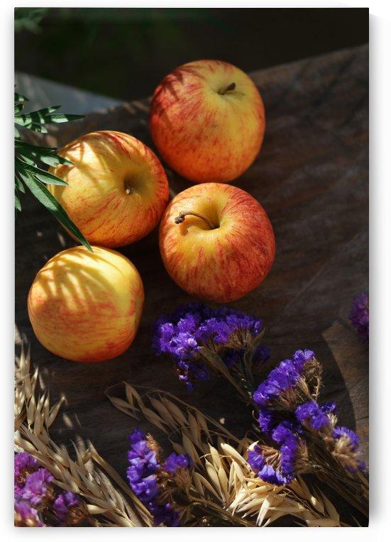 Apples by Krit of Studio OMG