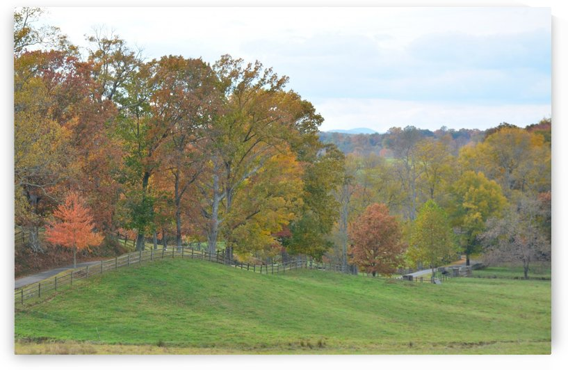 Fall In Virginia Landscape Photograph by Katherine Lindsey Photography