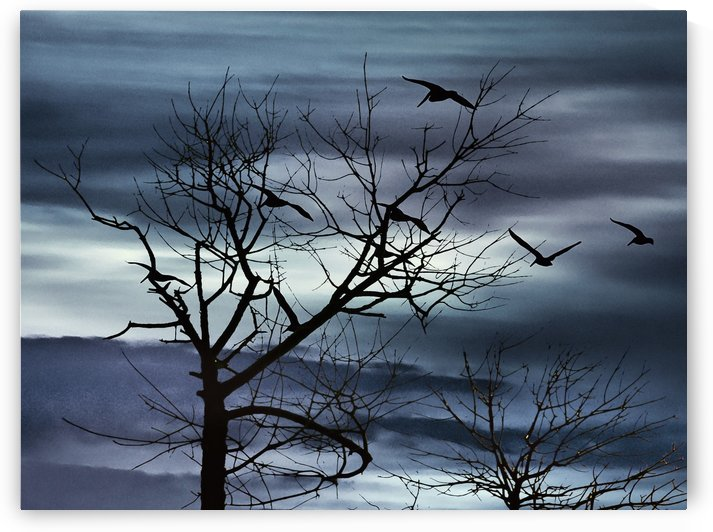 Night Nature Scene Photo Illustration by Daniel Ferreia Leites Ciccarino