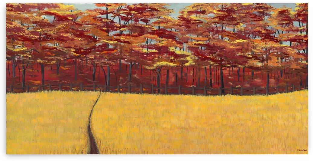 Dreams of Autumn by Kelsey VandenHoek