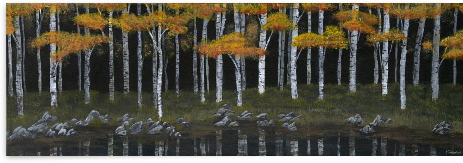 Midnight Reflections by Kelsey VandenHoek