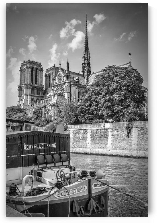 PARIS Cathedral Notre-Dame   monochrome by Melanie Viola