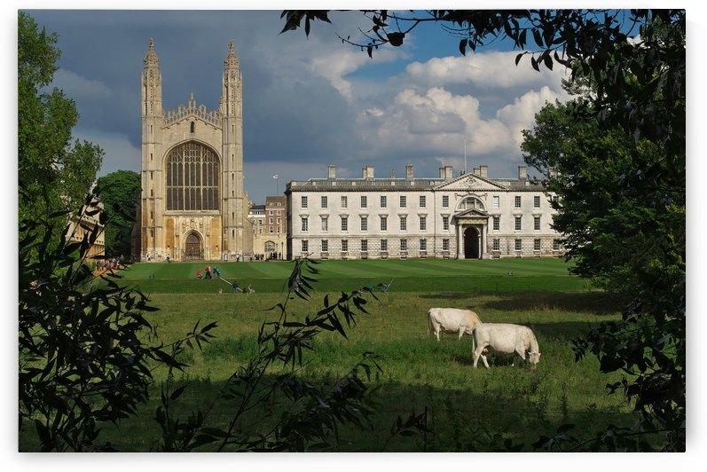 Cambridge by Douglas Kay