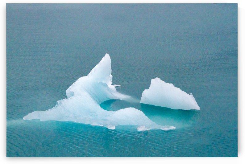 Iceberg Images - Alaska  by 3Quarters Images
