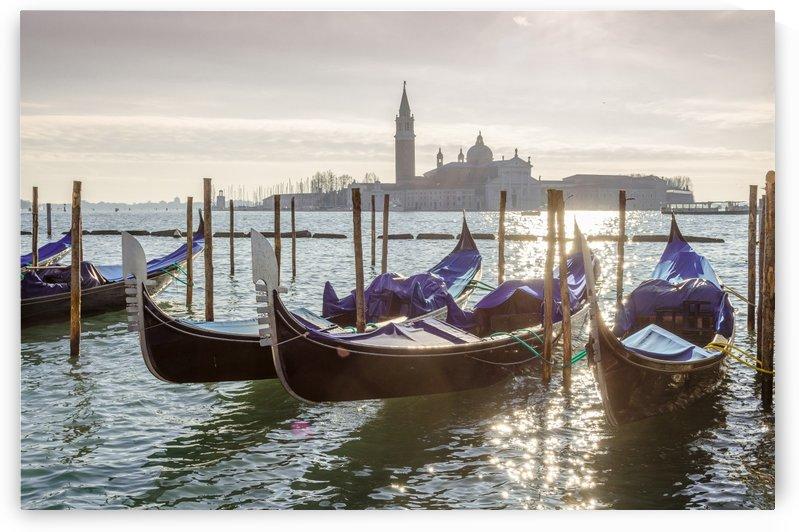 Venice by Douglas Kay