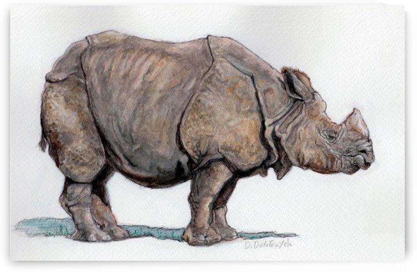 Water Color Rhino by Delaram dehrouyeh
